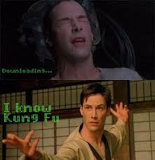 kung fu matrix